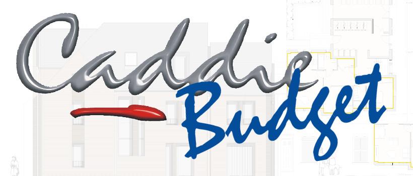 Caddie Budget